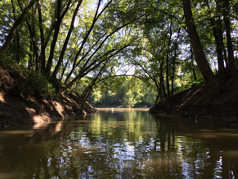 The Licking River