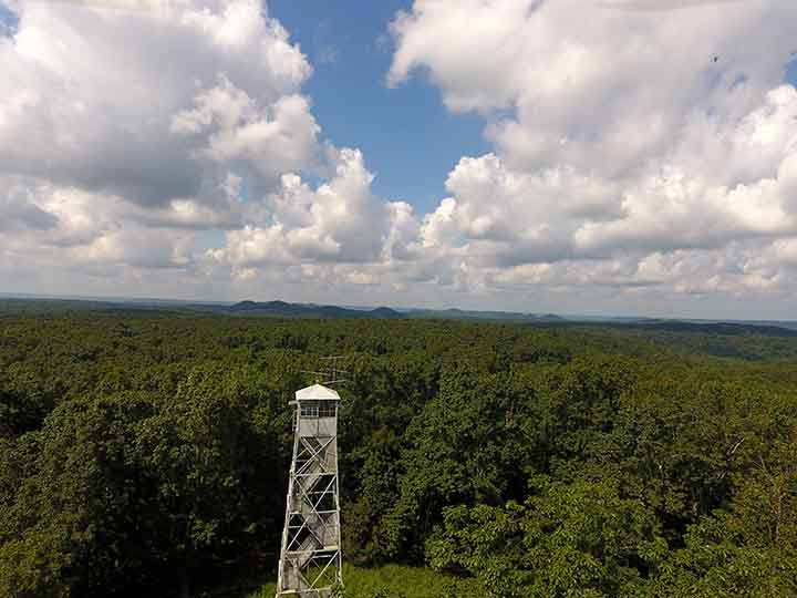 USDA awards $6.8 million for Bernheim Forest project