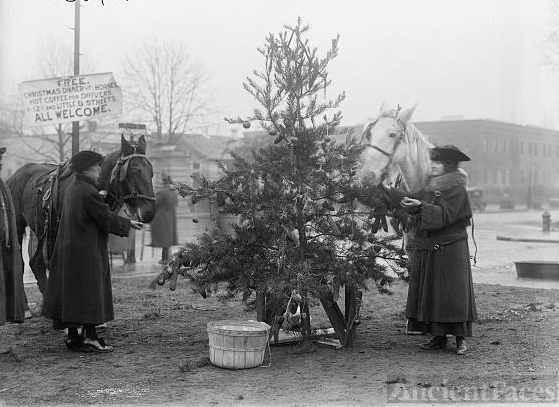 Christmas Tree for Horses, 1918