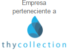 logo de thy collection