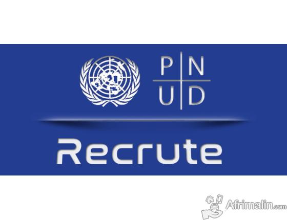 Emploi : Le PNUD recrute Assistant(e) Administratif (ve) et financier (ère)