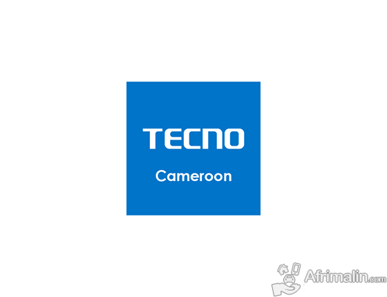 Regional Manager at Tecno Cameroon
