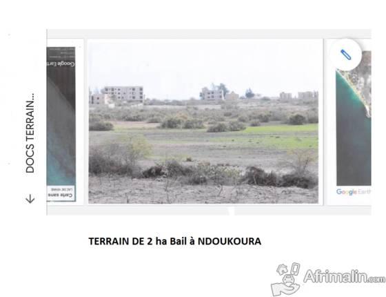 Terrainn Bail 1 ha à vendre Ndoukoura Wolof