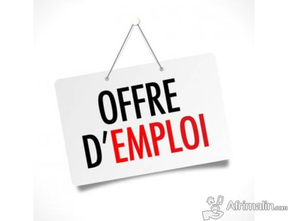 Recrutement dun Assistant Local la Scurit au bureau du
