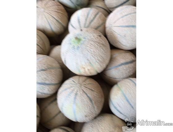 Vente de diverses variétés de fruits