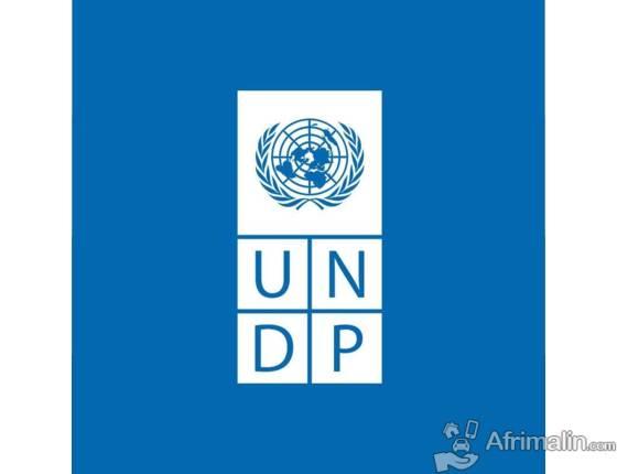 UNDP recrute 01 consultant individuel international