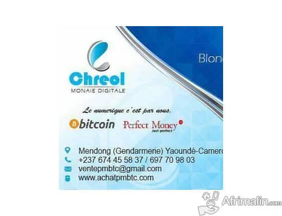 Achetez Bitcoin Ou Perfectmoney Au Cameroun Yaounde Region Du