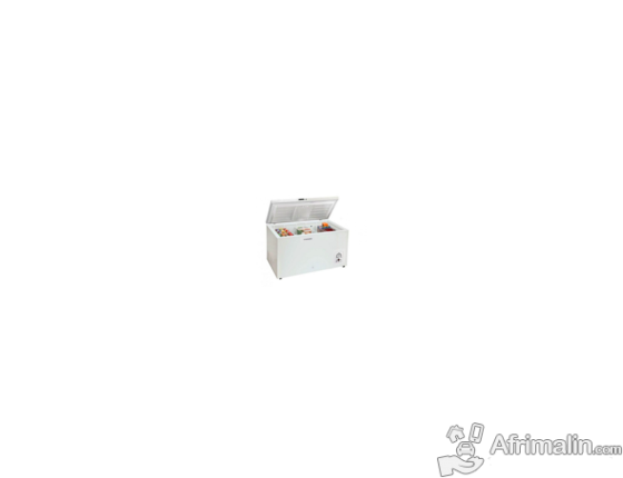 Congélateur Coffre 310L SAMSUNG ZR31 FARAEWW/GR