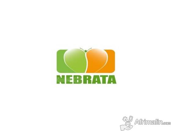 EMPLOI : NEB'RATA  RECRUTE 01 Développeur Back-end Java spring boot