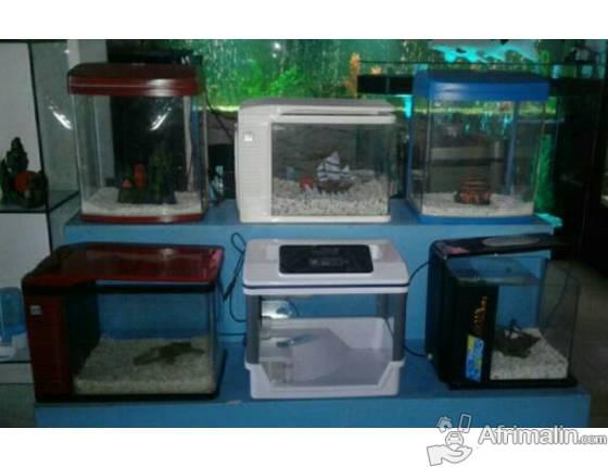 Aquarium toute genre