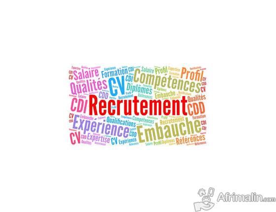 offres d'emploi:  Control Planification , Gestion des financements et Reporting