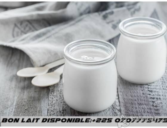 bon lait pour evenement