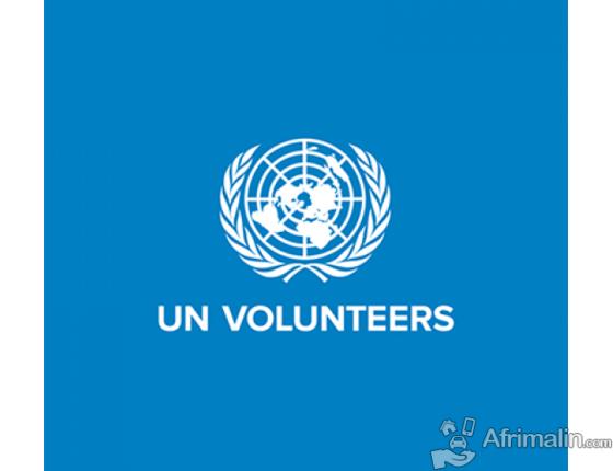 United Nations Volunteers RECRUTE Spécialiste chargé (e) de la communication