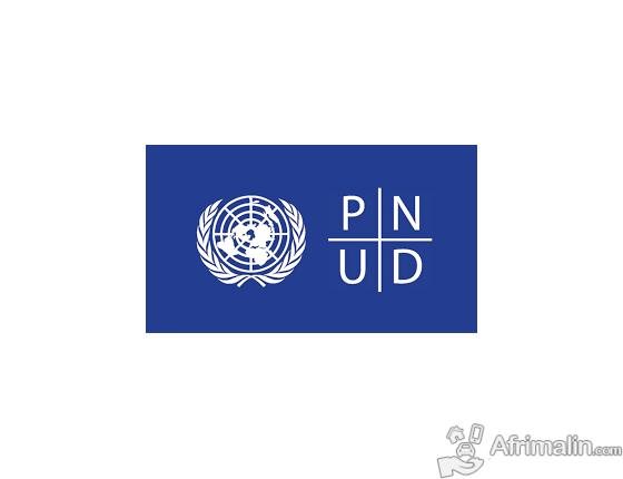 PNUD offre des bourses en administration-CNUDHD