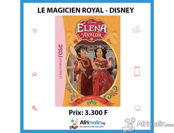 Elena d'Avalor 07 - Le magicien royal