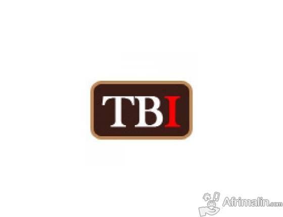 Emploi : TBI recherche des profils et des CV de Domoticiens