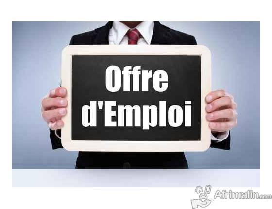 cherche un 01  assistant logistique et informatique - bamako  r u00e9gion de bamako  mali