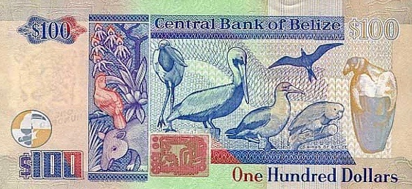 $100 Belize