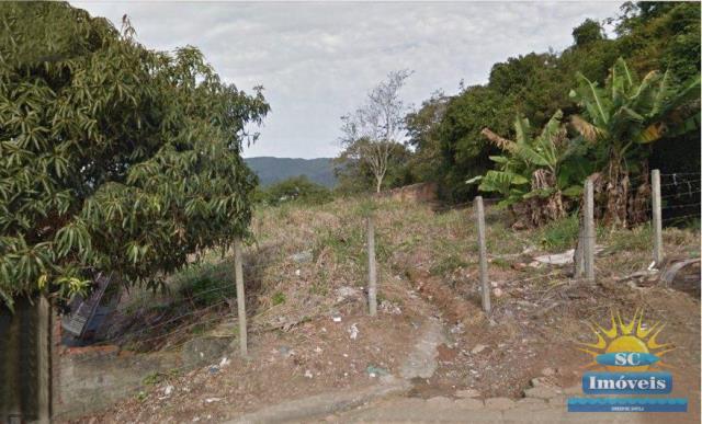 Terreno Código 13262 a Venda no bairro Trindade na cidade de Florianópolis