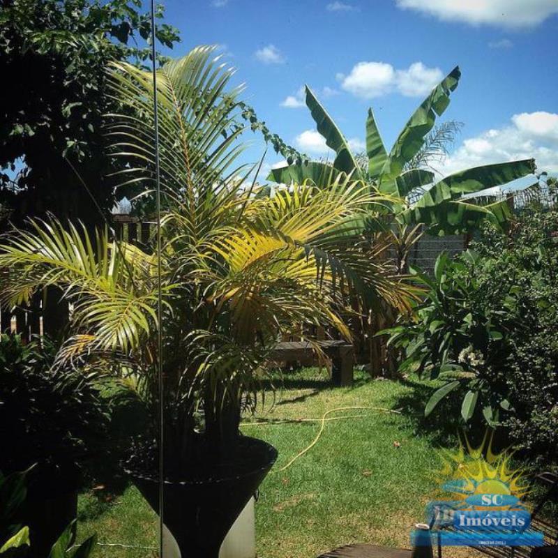 9. jardim e terreno
