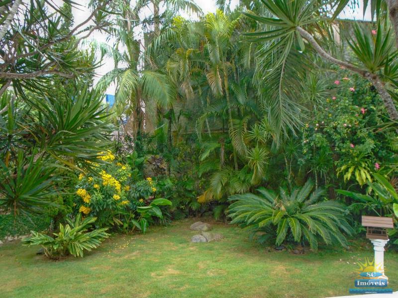 50. Jardim