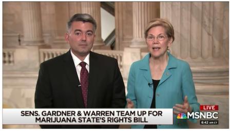 garnder-warren-marijuana