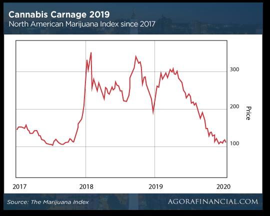Cannabis Carnage 2019