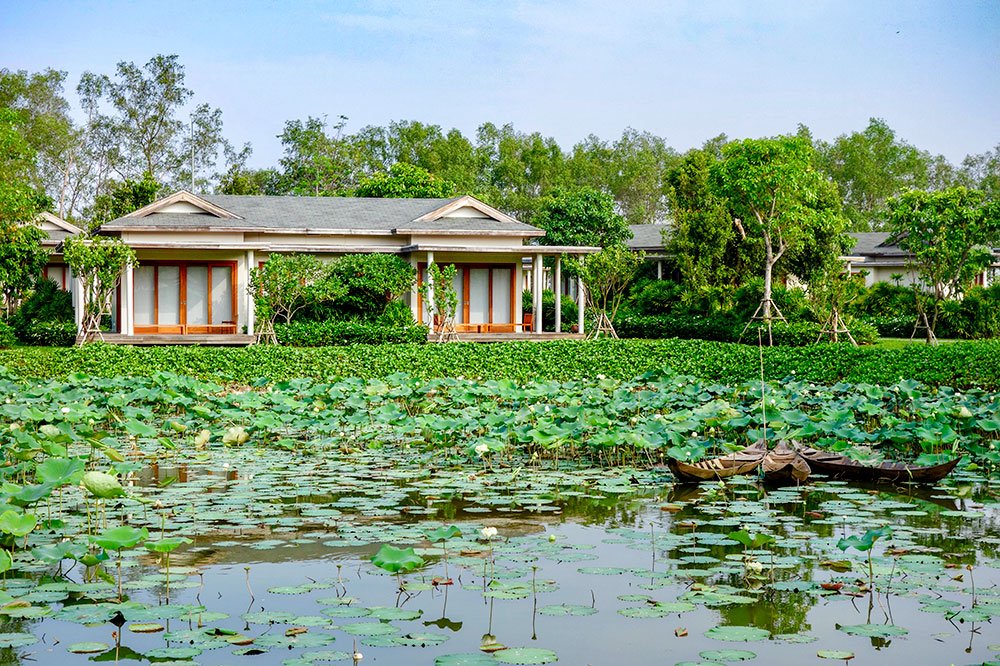 A room facing the lotus pond at Azerai Can Tho