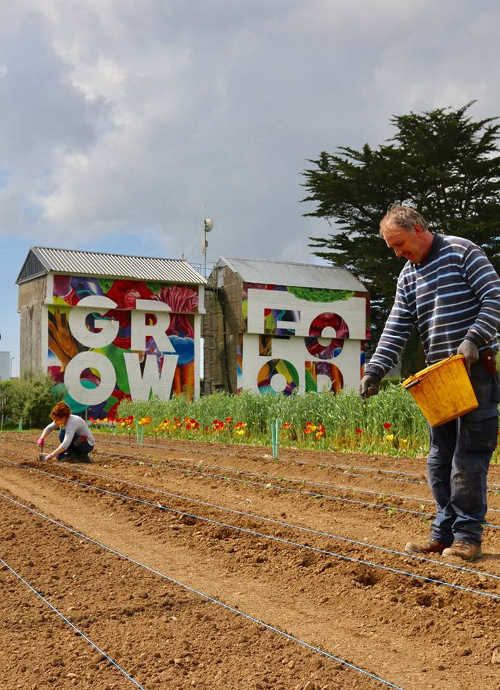 Working in the garden at the Ballymaloe Cookery School