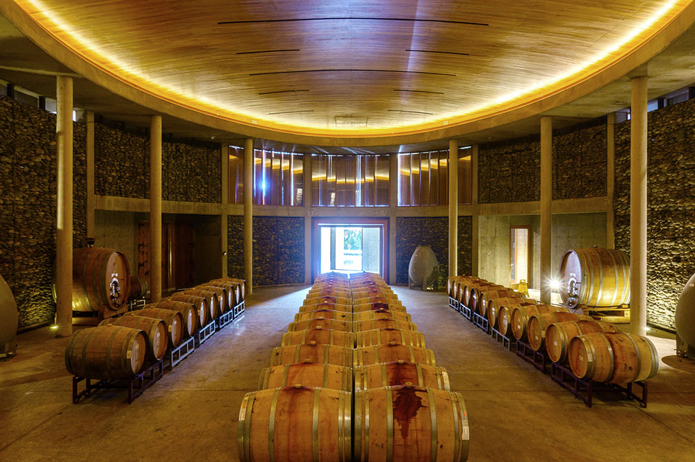 The barrel room of Matetic Vineyards in Valparaiso, Chile