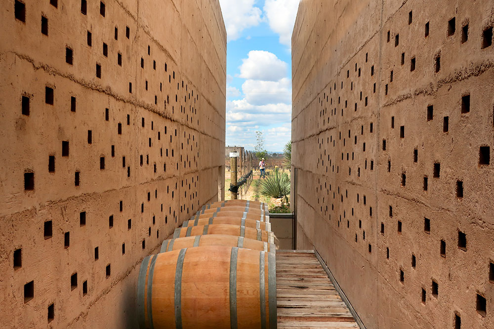 Between two barrel rooms at Cuna de Tierra