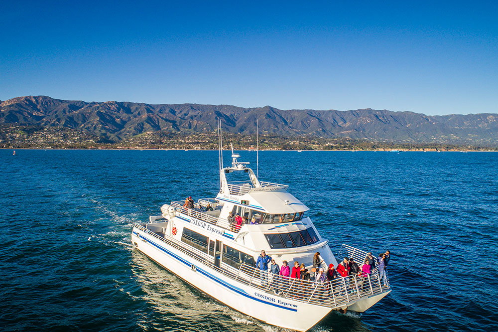 The Condor Express whale-watching tour