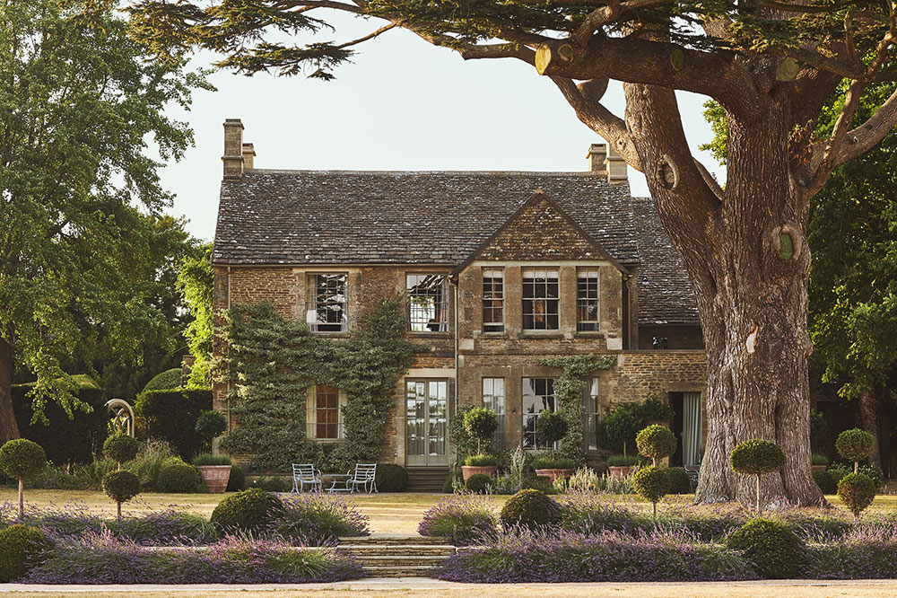 Thyme in the Cotswolds, England