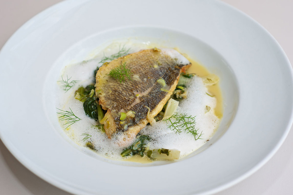 Grilled fish fillet served with flavored potato cream, saffron and lemon at Siparos in Naoussa
