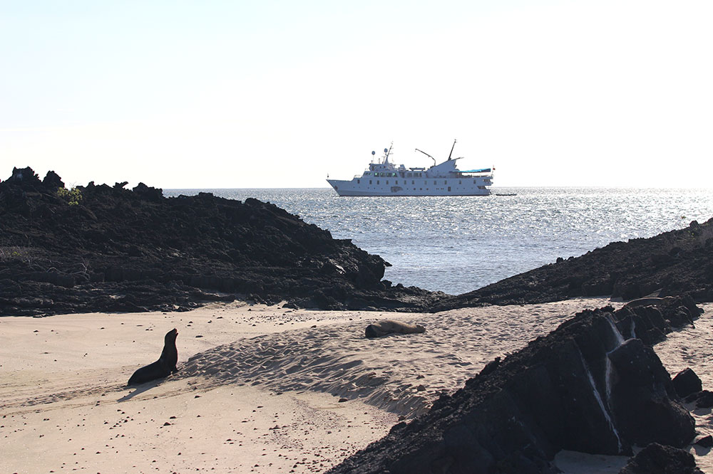 UnCruise's <em>La Pinta</em> seen in the distance in the Galápagos