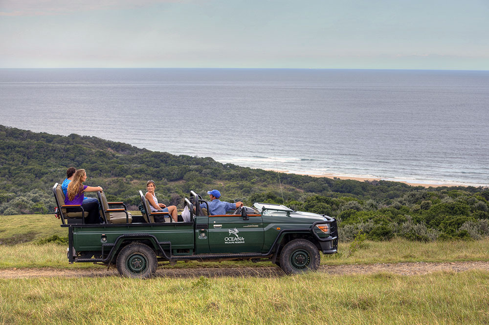 Game drive at Oceana Beach in Port Alfred