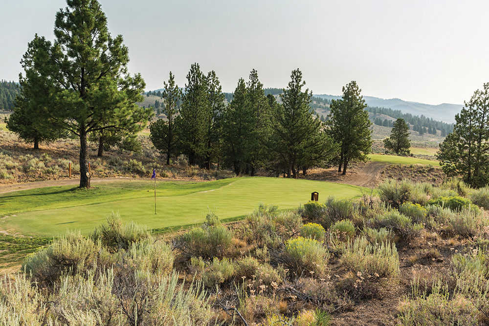 Island green on the Gauntlet short course at Silvies Valley Ranch