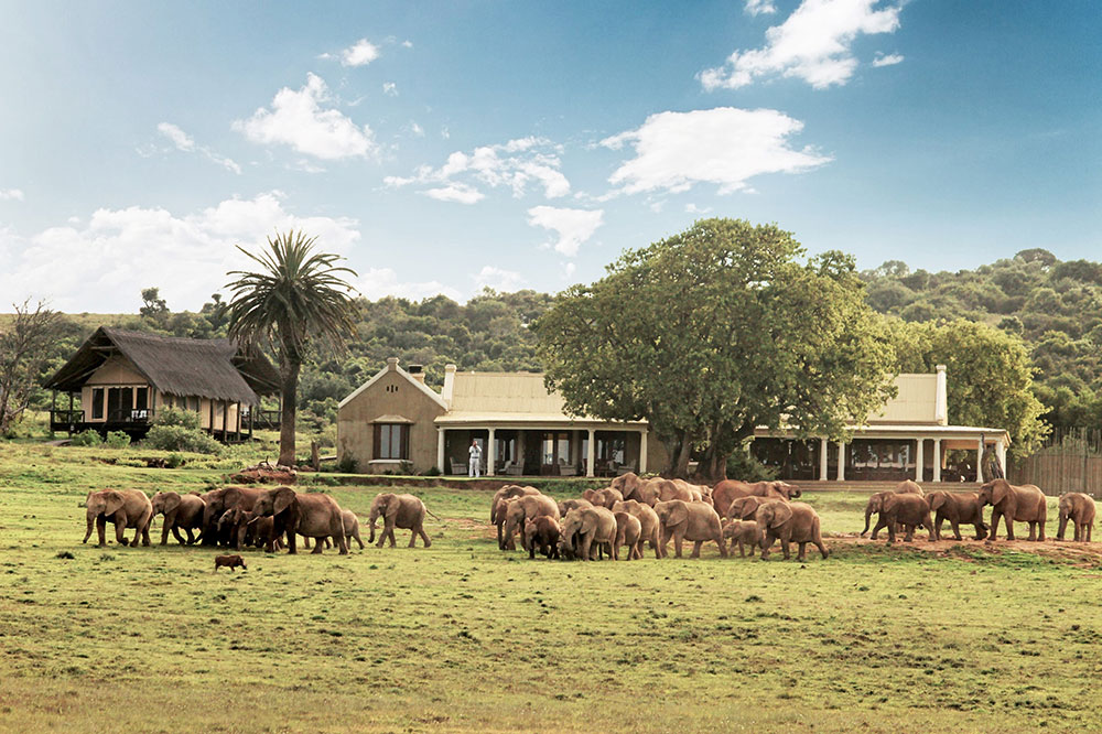 Gorah Elephant Camp in Addo National Park