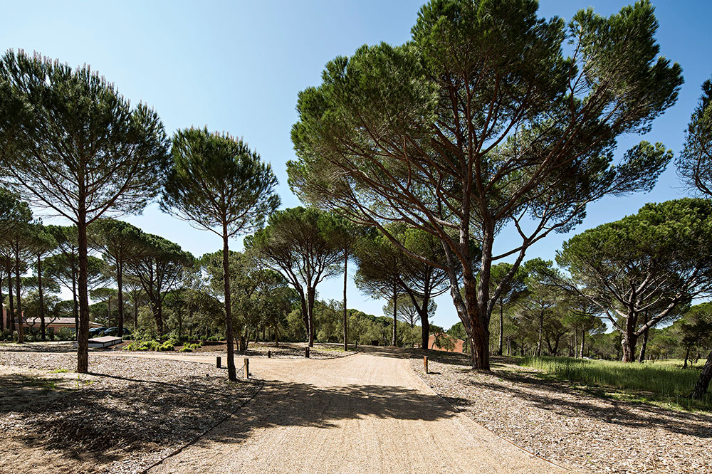 The grounds of Sublime Comporta
