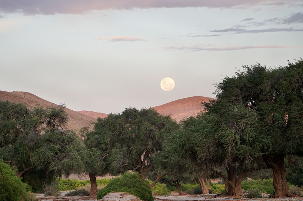 The moon rising during our sundowner drive through the Hoanib Valley