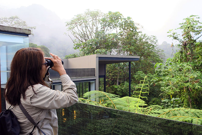 13 Exceptional Hotels for Bird-watching