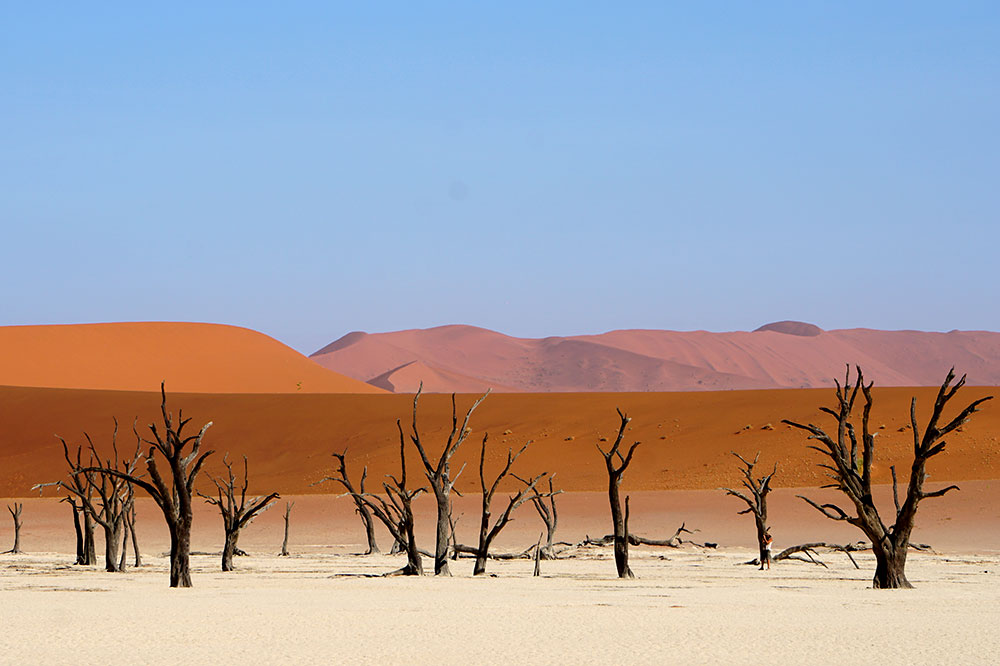 Deadvlei, a white clay pan inside the Namib-Naukluft National Park