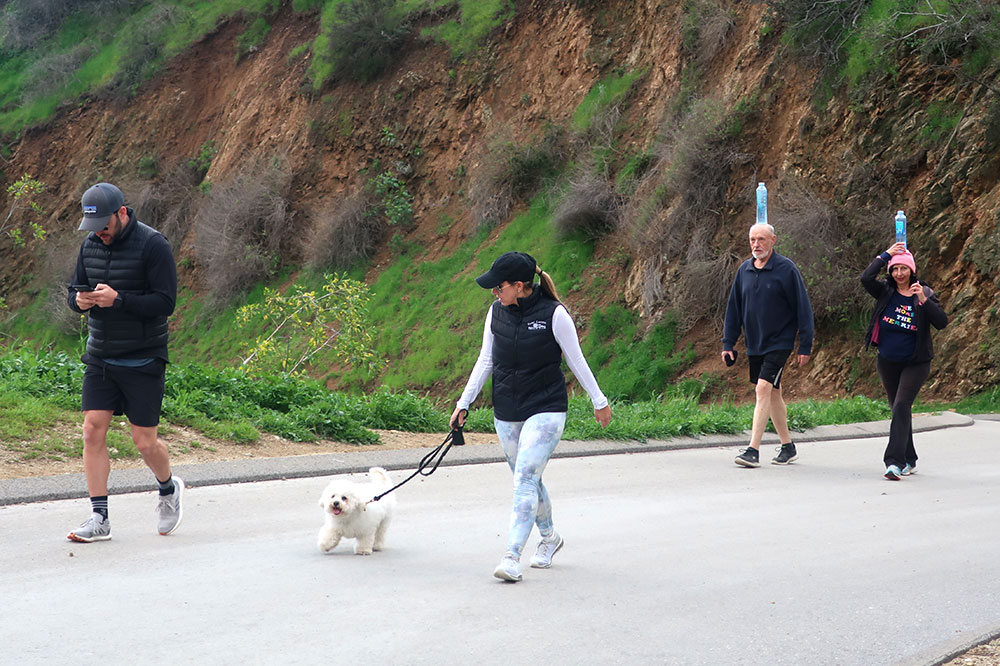 Scenes from Runyon Canyon Park