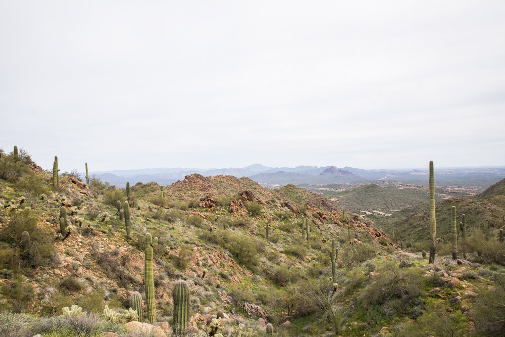 View of Scottsdale from the Sunrise Peak Trail at the McDowell Sonoran Preserve