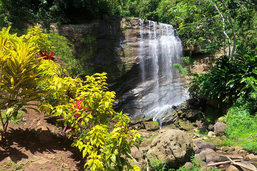 Mt. Carmel Falls