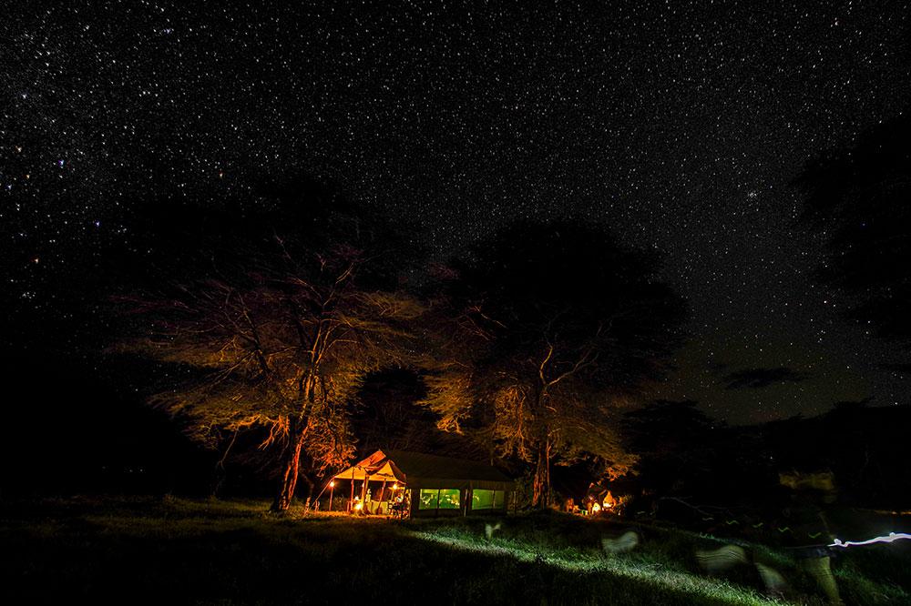 Stars seen from Mara Plains Camp