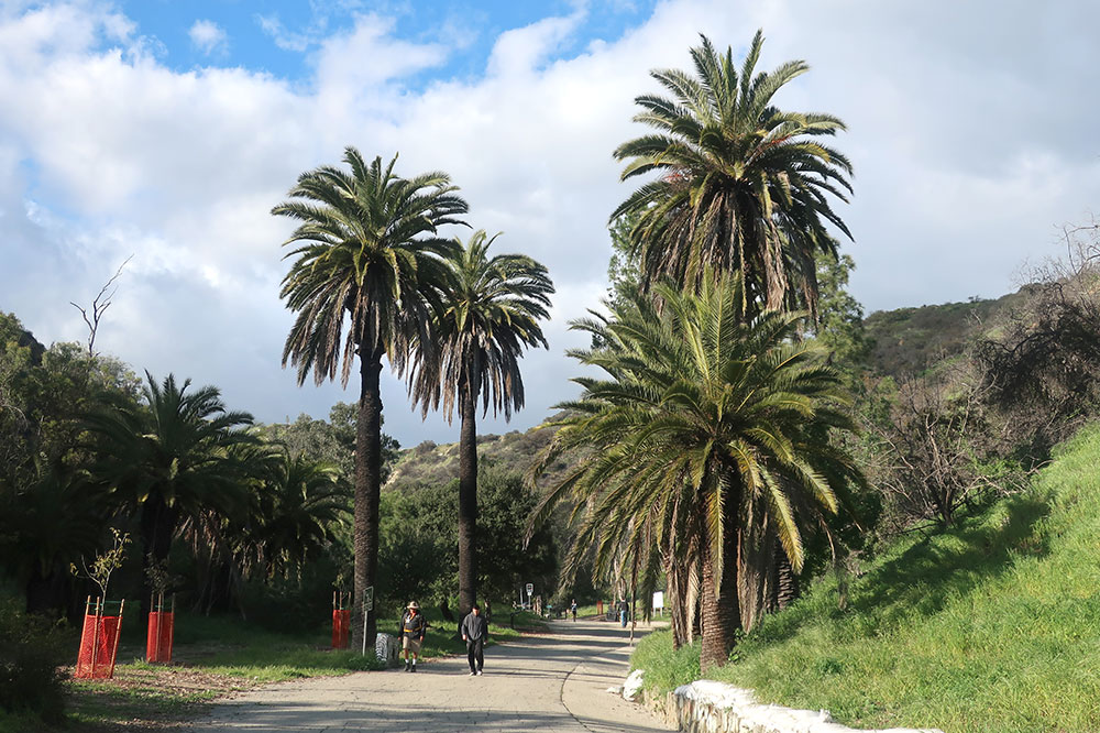 The trailhead for the East Trail in Runyon Canyon Park in Los Angeles