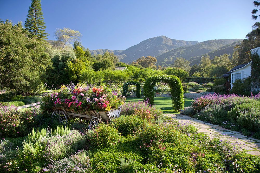 The wedding lawn at San Ysidro Ranch