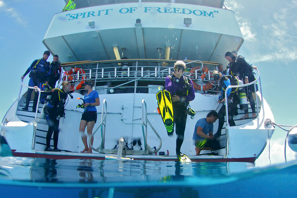 Scuba diving off the <em>Spirit of Freedom</em> ship at the Great Barrier Reef in Australia
