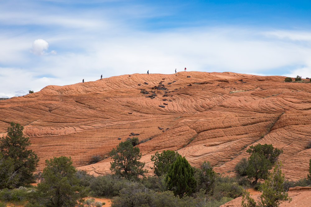 Hikers crossing a distant petrified dune